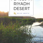 Ten Beautiful Places to Discover in Riyadh's Desert