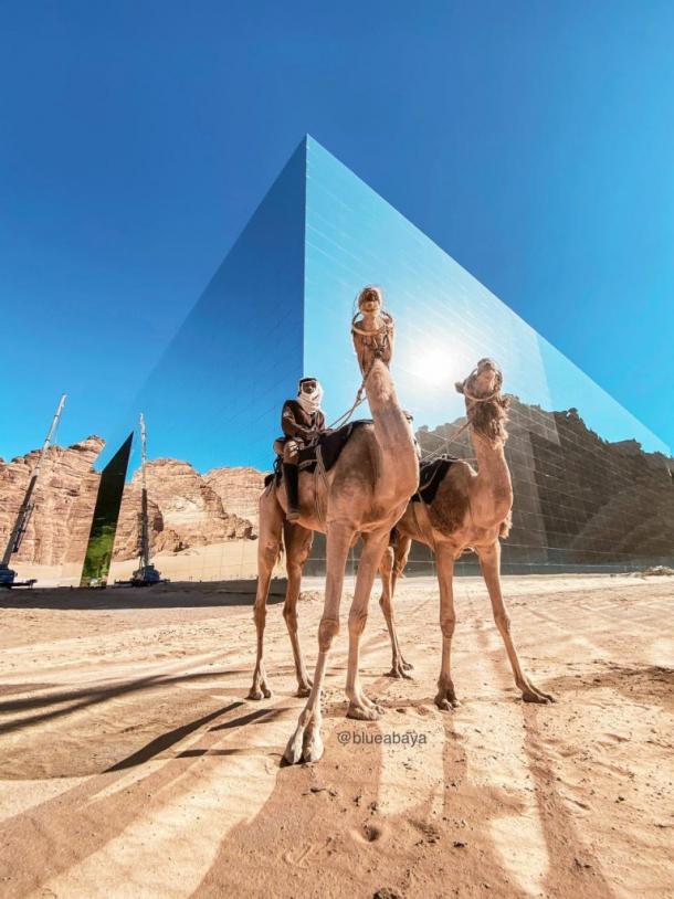 camel, maraya, alula