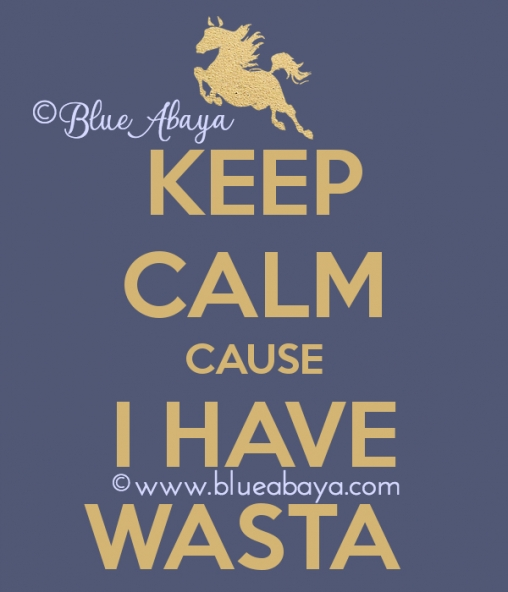 keep-calm-cause-i-have-wasta-WM