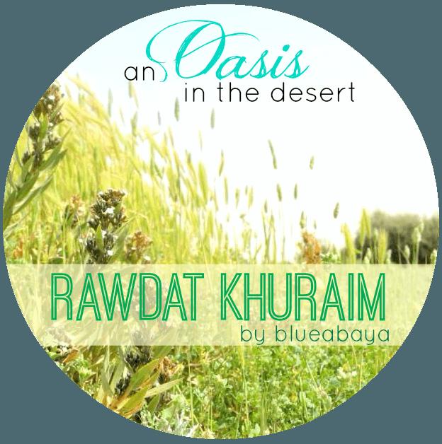 oasis desert saudi arabia