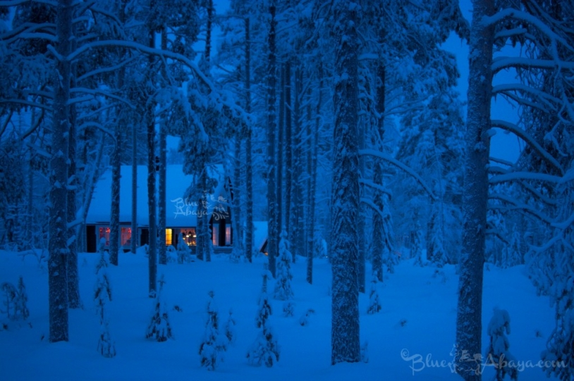 cabin winter forest lapland