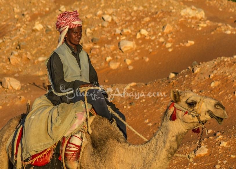 camel herder saudi arabia
