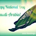 National Day Celebrations In Riyadh