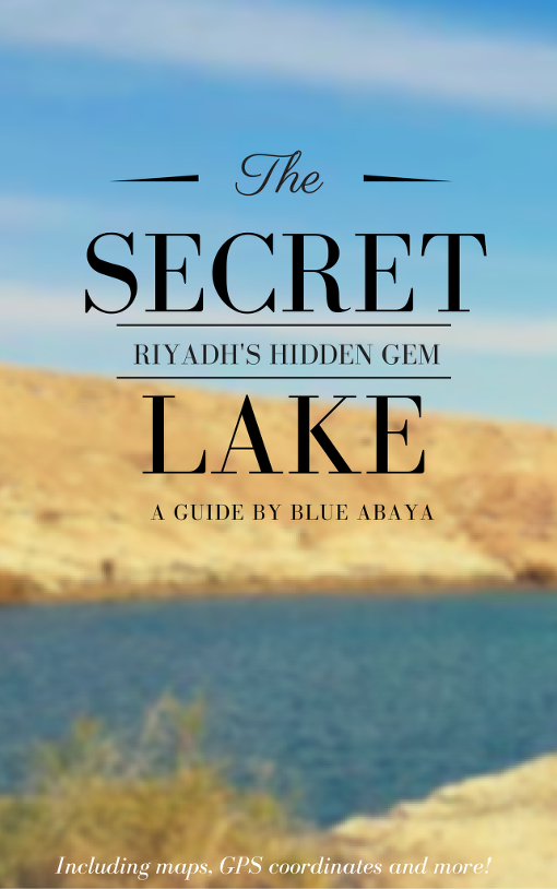 secret lake ebook cover