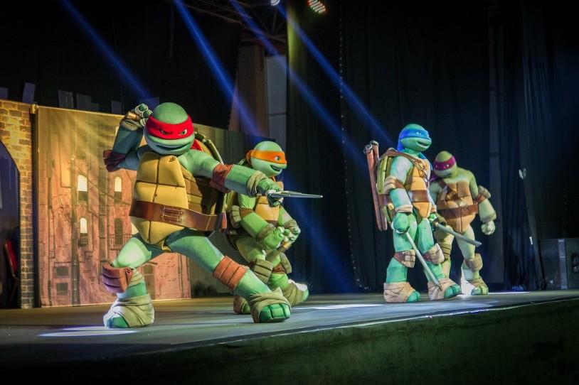 Ninja turtles Kids in Motion Show