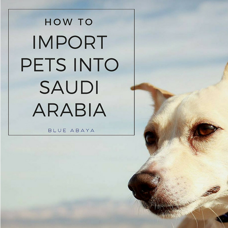 How to Import Pets into Saudi Arabia | Blue Abaya