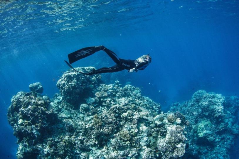 diving scuba yanbu saudi