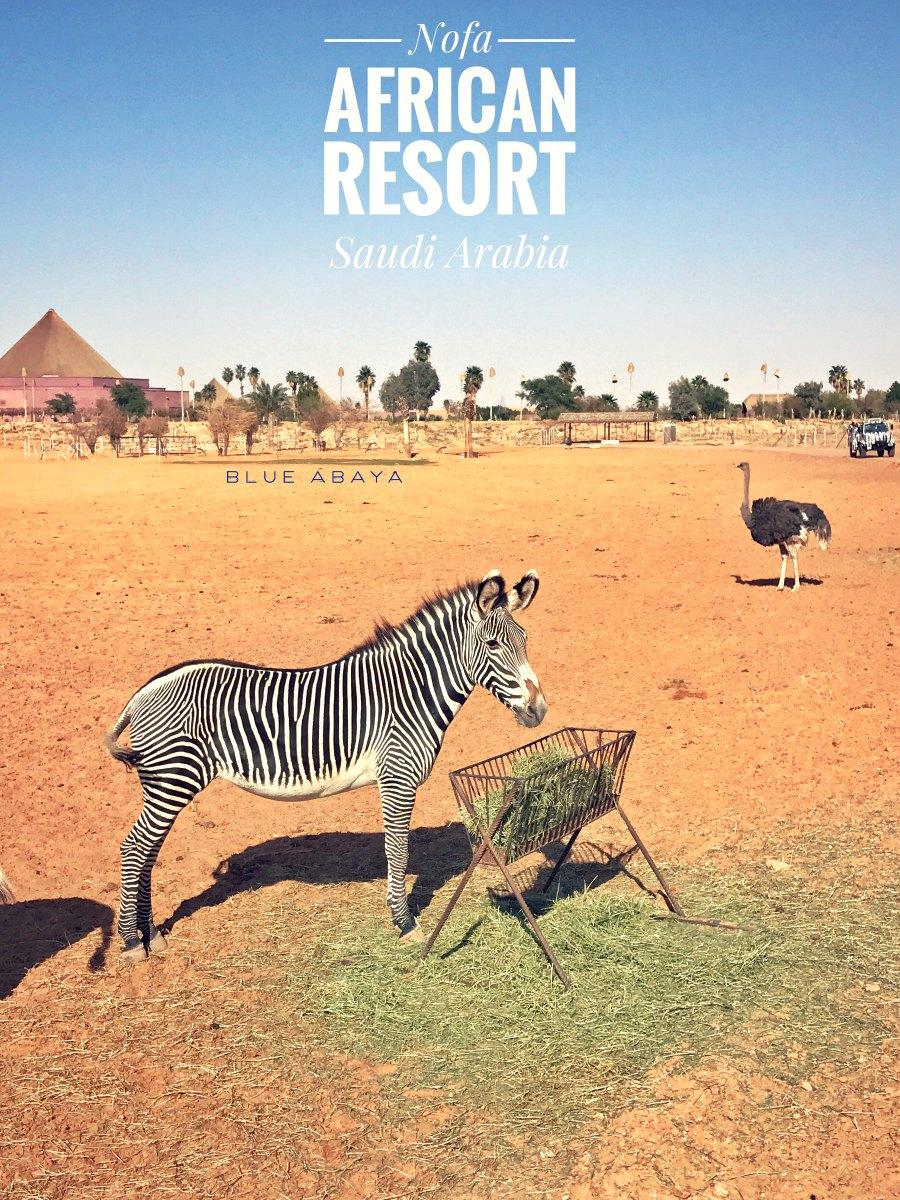 Nofa african resort safari and wildlife center riyadh blueabaya pin this post and save for later fandeluxe Choice Image