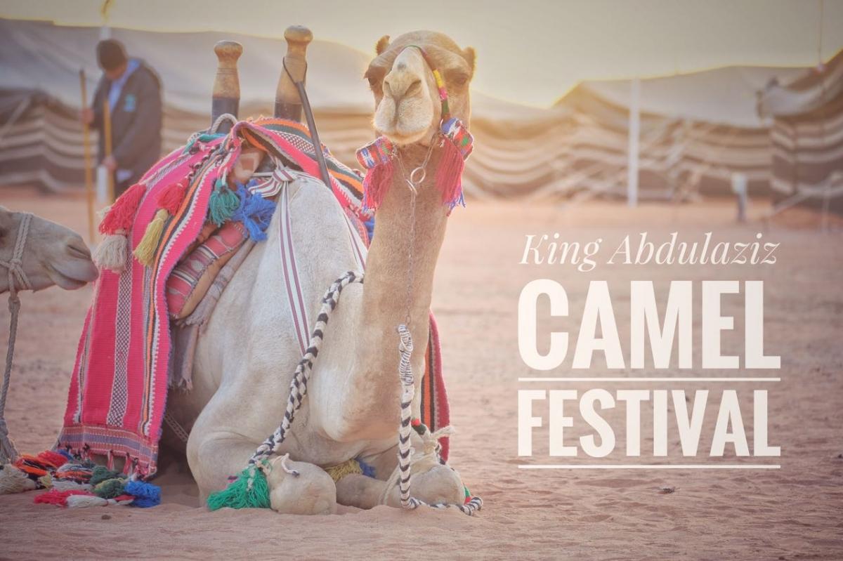 The Camel Festival In Riyadh Saudi Arabia