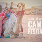 The King Abdulaziz Camel Festival in Saudi Arabia