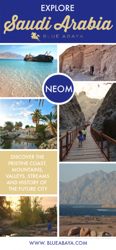 """bda22d14a The Vision 2030 has launched several New """"mega projects"""" such as the future  city NEOM and the Red Sea Project, aimed to make Saudi Arabia an  international ..."""